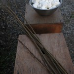 Marshmallows for the fire