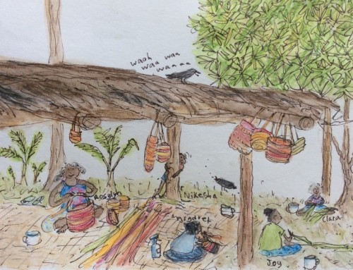 Weaving Stories in Ink and Pandanas: Trace's Picture Journal From Mapuru, Arnhem Land.