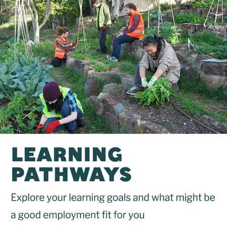 CERES Learning Pathways